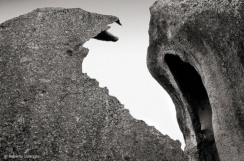 09-metamorfosi-naturali.jpg